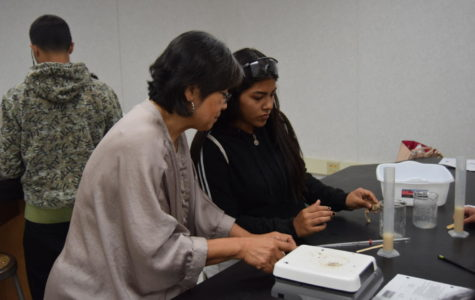 Ms. Haley working with Galilea Cardona.