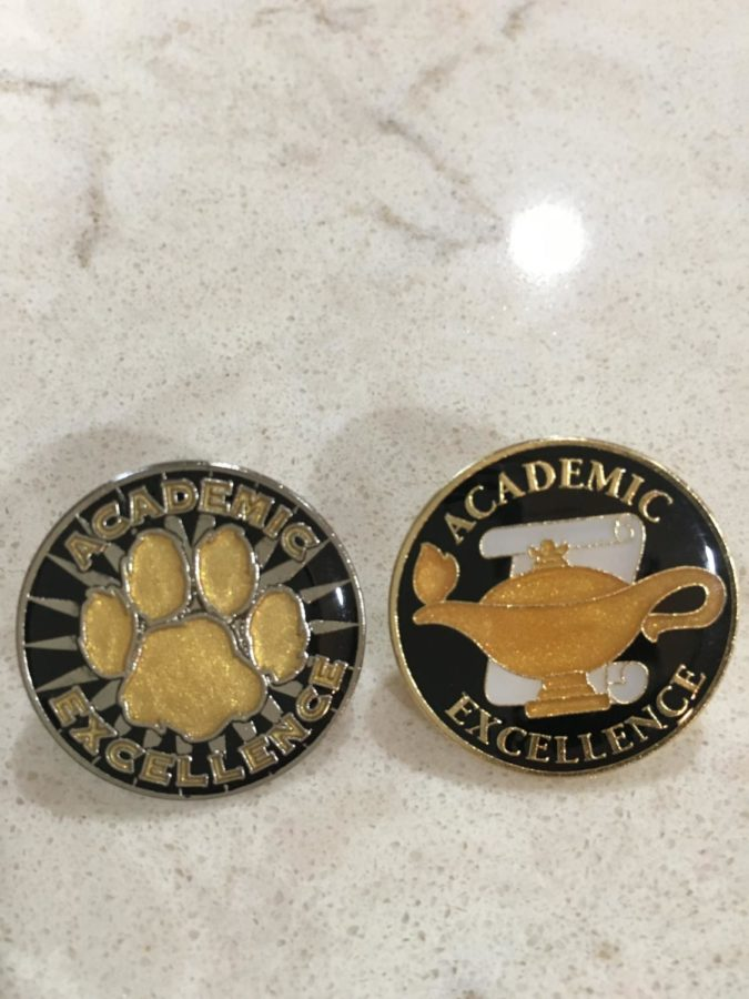 Academic+pins+received+at+the+awards+night