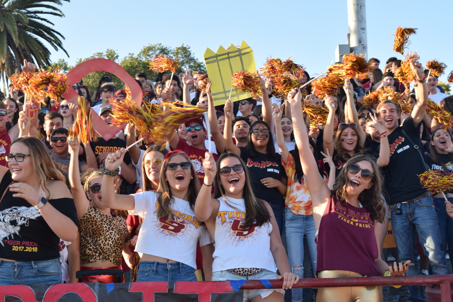 Students in the Tiger Pride section rally for the start of the football season.