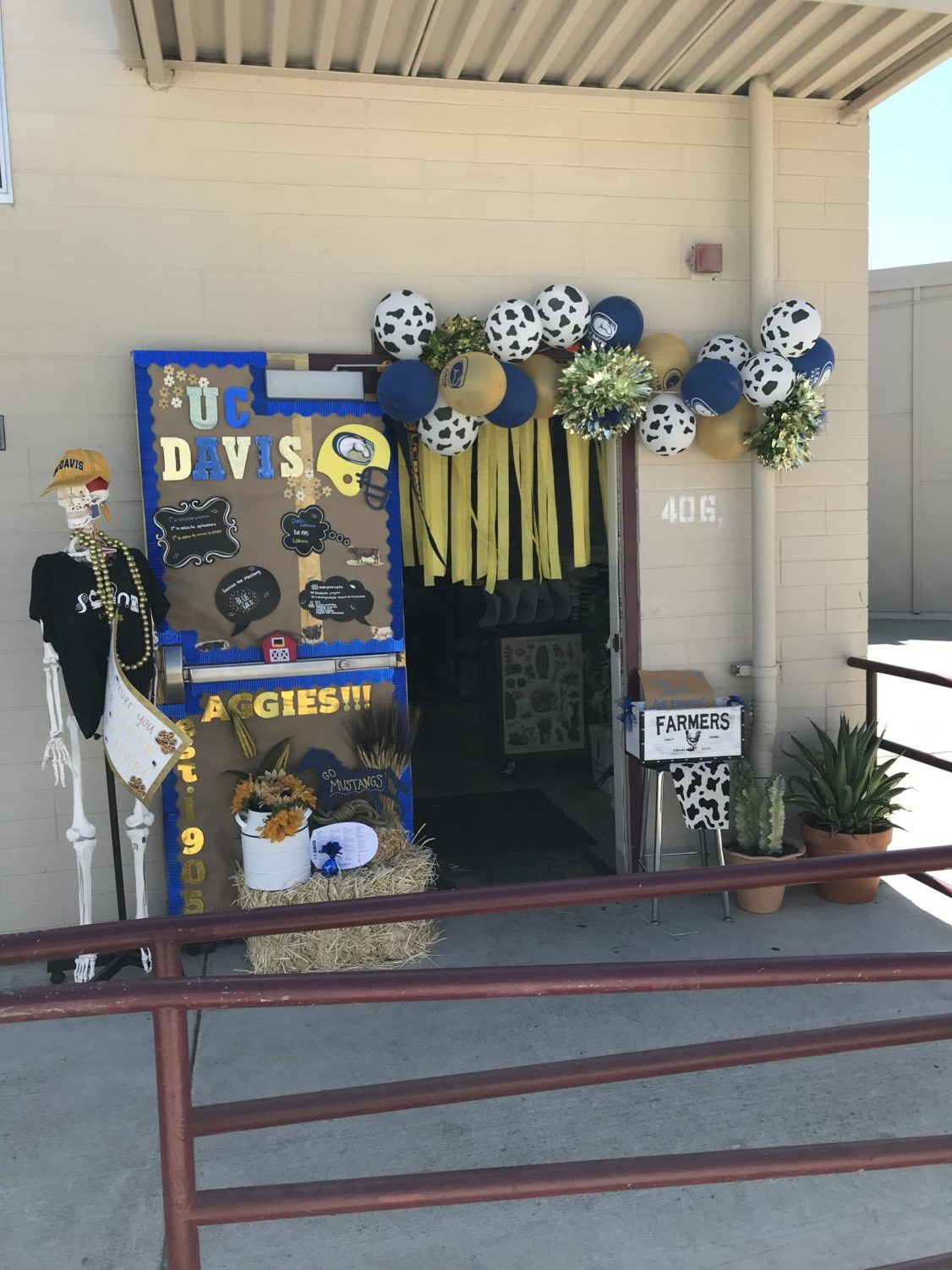 Mrs. Fajardo's fourth period won the door decorating contest with a beautiful display representing UC Davis.