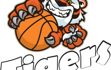 2020 Tigers Basketball Season