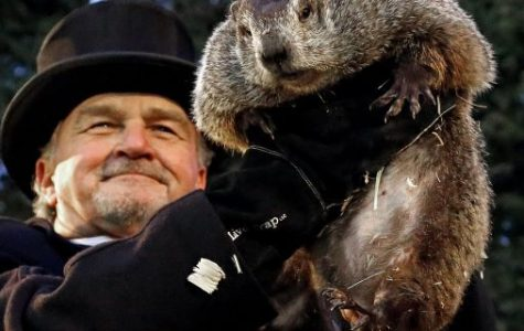 An Insight into Groundhog Day