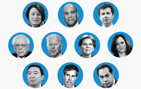 The Democratic Primaries Weeds Out Candidates