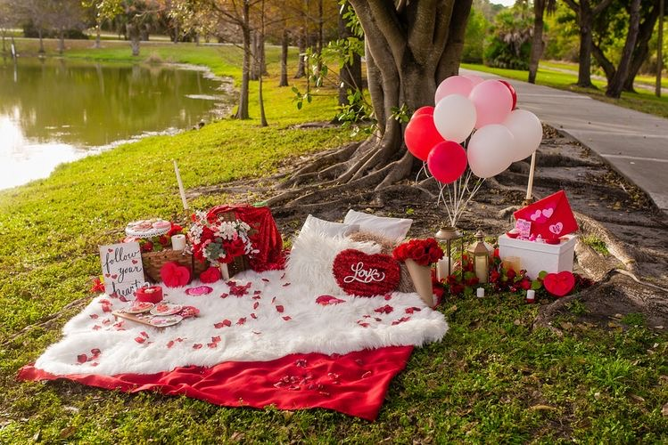 Valentine's Day Picnic Date