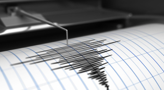 A+seismometer%2Fseismograph+is+used+to+record+quake+activity